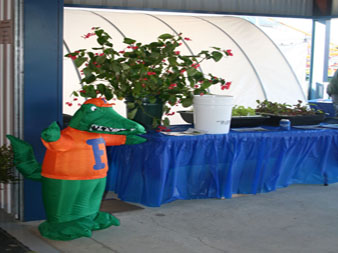 Horticulture Display
