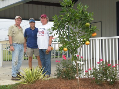 David Marshall and crew with new plantings